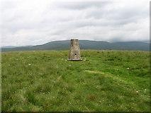 NT0513 : Annanhead Hill Trig Point S5678 by Chris Wimbush