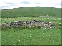 NT0917 : Sheepfold below Macrule Hill near to Priesthope Burn by Chris Wimbush