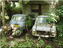 SW6931 : Old minis by Sheila Russell