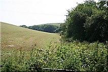 SW9048 : Field and Valley Bottom Woodland by Tony Atkin