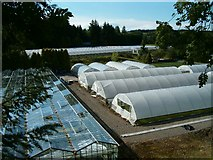 NM9728 : Greenhouse and polytunnels by Patrick Mackie