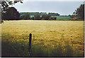 SU8314 : South Downs Landscape at Chilgrove. by Colin Smith