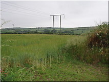 SW6735 : Fields and power lines near Burras by Sheila Russell