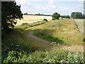TF9731 : Old railway track by David Williams