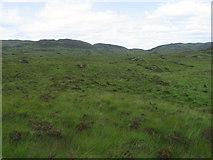 NX4494 : Rough moorland by Chris Wimbush