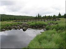 NX4690 : Bridge over Gala Lane by Chris Wimbush