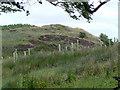 NS8166 : Annie's Hill by James Allan