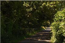 J4937 : Ballynoe Road near Killough by Albert Bridge
