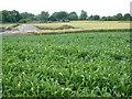 TL2941 : High Farm, Ashwell by Stuart Buchan