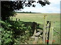 SJ5472 : Norley - footpaths from Delamere Forest by Mike Harris