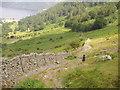 NY3718 : Descending Glencoyne towards  Seldom Seen by chris pearson
