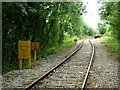 SM9331 : Branch to Trecwn by Stephen McKay
