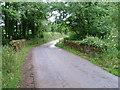 SX2495 : Delightful Bridge by Neil Lewin