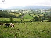 S6644 : View from lane near Glencoum Wood, near Graiguenamanagh, Co. Kilkenny by Humphrey Bolton