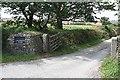SW8155 : Driveway to Treludderow Manor by Tony Atkin