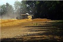 TQ7948 : Footpath & Harvest Home by Glyn Baker
