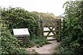SW7755 : Exit from Penhale Sands by Tony Atkin