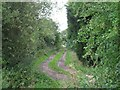 SE7236 : A Footpath From Foggathorpe by Roger Gilbertson