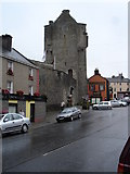 S1389 : Gate Tower of Roscrea Castle by Roger McLachlan