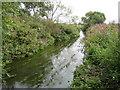 TQ7694 : River Crouch by Nigel Cox