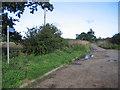 TL4678 : The Black Fen Waterway Trail, Wentworth, Cambs by Rodney Burton