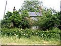 TL4976 : Chamber's Farm, Grunty Fen, Cambs by Rodney Burton
