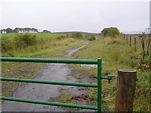 NS8260 : Birniehill Road across Hareshaw Moss by Chris Upson