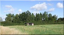 SP8220 : Small shed by Rob Farrow