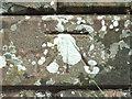 NY7611 : Bench Mark by Alexander P Kapp