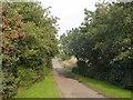 NS7962 : Track leading to Budshaw Farm by Chris Upson