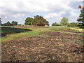 SP1388 : Aftermath of fire at Hodge Hill Common by David Stowell