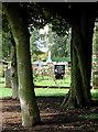 TA1430 : Hull's Eastern Cemetery by Paul Glazzard