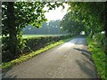 NY3664 : Country road near Floristonrigg by Oliver Dixon