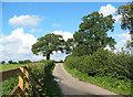 SJ7347 : Mill Lane, near Blakenhall by Espresso Addict
