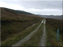 NR6112 : The Kintyre Way at the top of Glenadale. by Steve Partridge