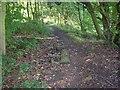 SE1222 : Causey stones (2), Binns Lane, Southowram by Humphrey Bolton