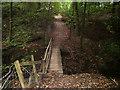 SJ9583 : Ryles Wood by michael ely