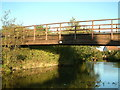 SP0273 : Footbridge (no. 64a), Worcester & Birmingham Canal nr Alvechurch by Simon McKeating