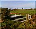 NY4364 : Field Gate and Farmland by Adrian Taylor