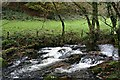 SX1567 : Warleggan River by Tony Atkin