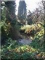 SO8792 : The Wom Brook by John M