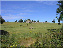 G1833 : Dolmen and ruins of a farm, near Rathfran by Francoise Poncelet
