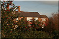 SJ5960 : Farm Cottages near Alpraham Green by Peter Styles