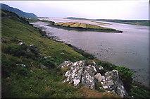 G6890 : Ilancreeve Island in Bracky River Mouth by Kieran Evans