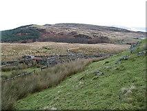 NS4779 : Sheepfold by David Robertson