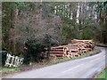 SP9130 : Woodpile near Great Brickhill by Rob Farrow