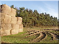 TF9732 : Bales of Hay by David Williams