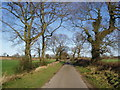 TF9735 : Rural Road by David Williams