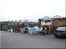 ST6792 : Eastwood Garden Plant Centre by Jonathan Billinger