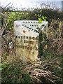 SJ4561 : Mile Post at Hatton Heath by John S Turner